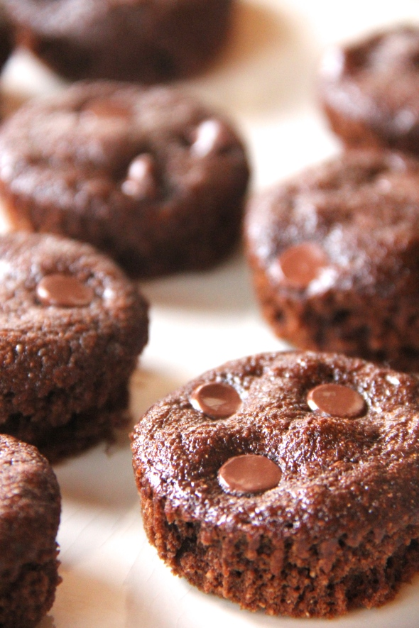 Skinny Chocolate Muffin Bites by Skinny Girl Standard, a low calorie food blog